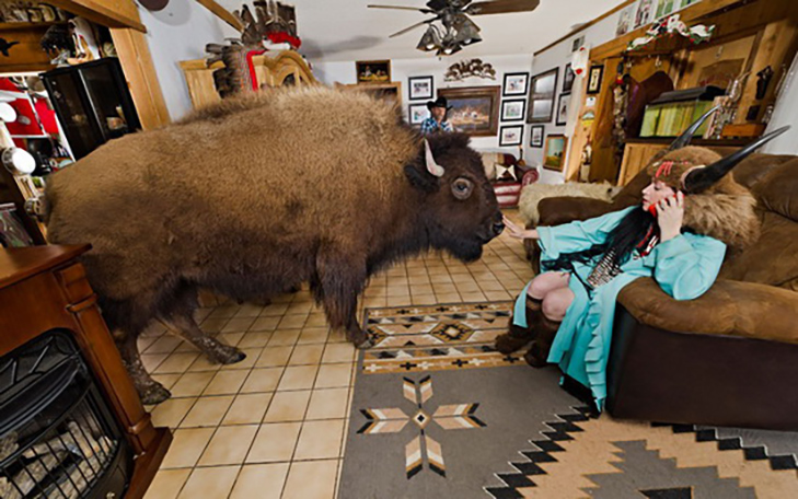 35 домашніх тварин, які вас здивують - фото 26