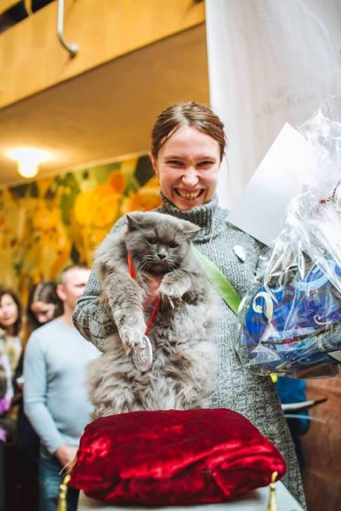 Чому коти, які мають закарпатських господарів, живуть, як у Бога за пазухою - фото 2