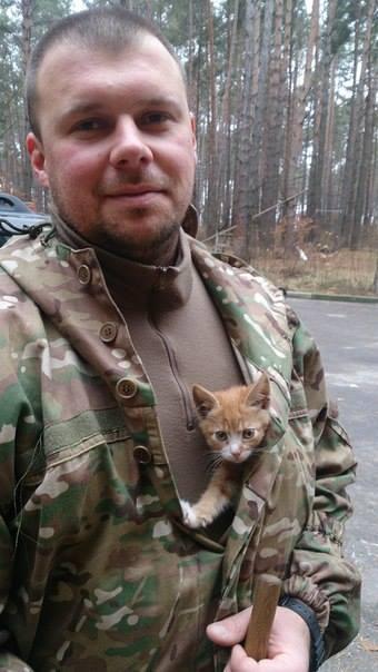 За що котам в АТО треба поставити пам'ятник-2 - фото 10