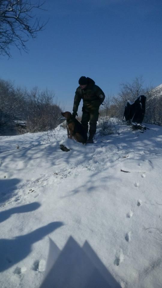За що собакам в АТО треба поставити пам'ятник - фото 5
