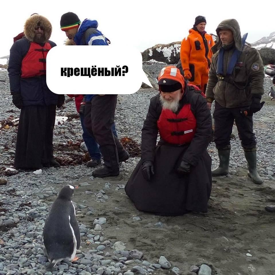 Як Гундяєв пінгвінів в Антарктиді хрестив (ФОТОЖАБИ) - фото 12
