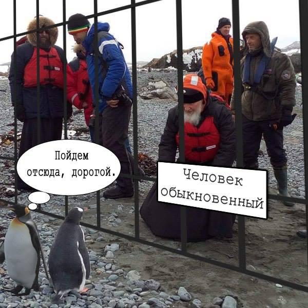 Як Гундяєв пінгвінів в Антарктиді хрестив (ФОТОЖАБИ) - фото 11