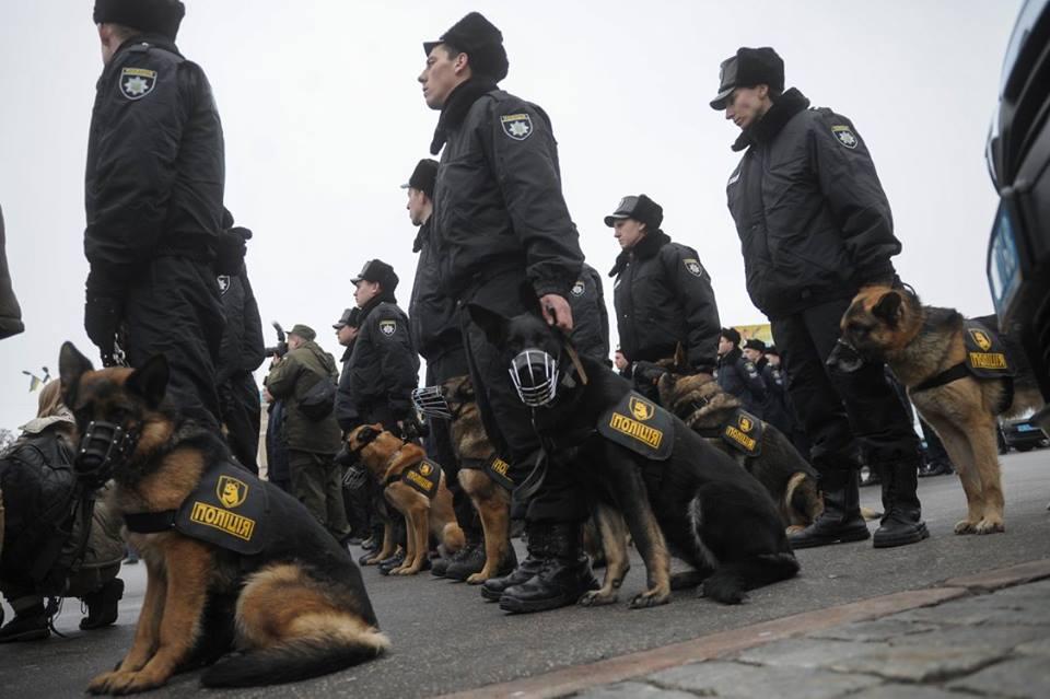 В Україні створили форму для поліцейських... собак - фото 2