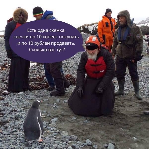 Як Гундяєв пінгвінів в Антарктиді хрестив (ФОТОЖАБИ) - фото 9