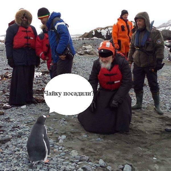 Як Гундяєв пінгвінів в Антарктиді хрестив (ФОТОЖАБИ) - фото 6