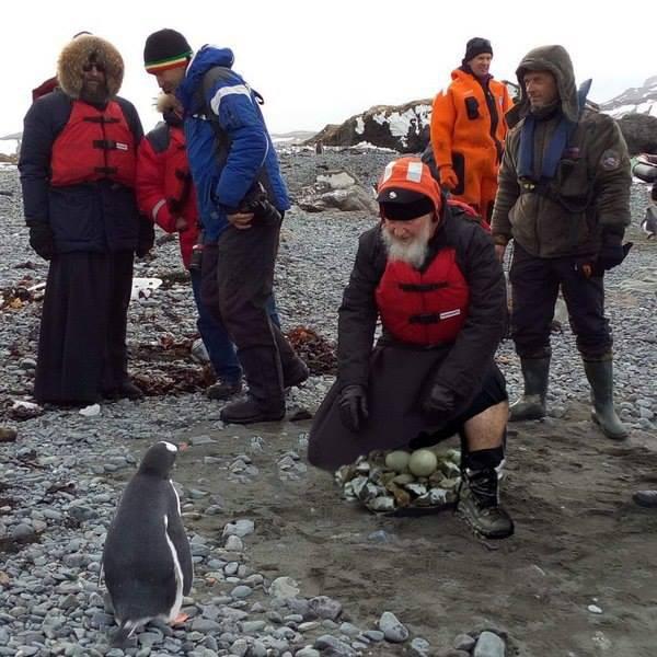 Як Гундяєв пінгвінів в Антарктиді хрестив (ФОТОЖАБИ) - фото 5