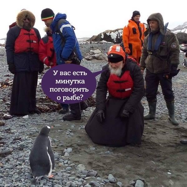 Як Гундяєв пінгвінів в Антарктиді хрестив (ФОТОЖАБИ) - фото 4