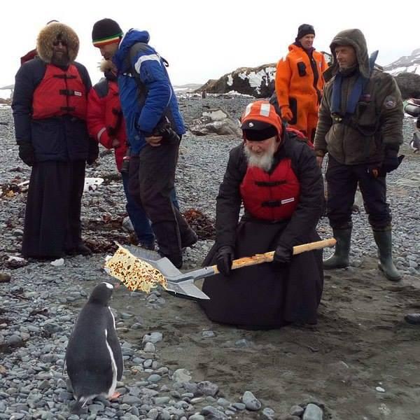 Як Гундяєв пінгвінів в Антарктиді хрестив (ФОТОЖАБИ) - фото 3