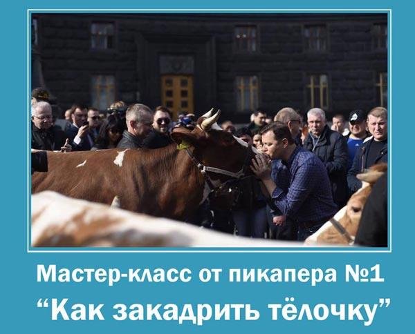 """День зоофіла під Кабміном або як Ляшко """"кадрив тьолочок"""" - фото 2"""