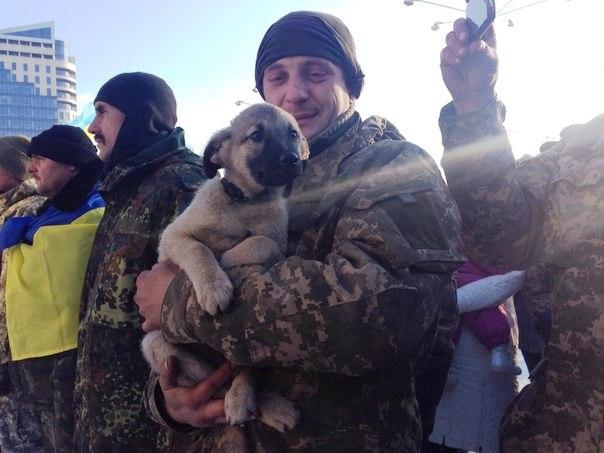 Чим займаються на Донбасі найкращі друзі бійців АТО-3 - фото 18
