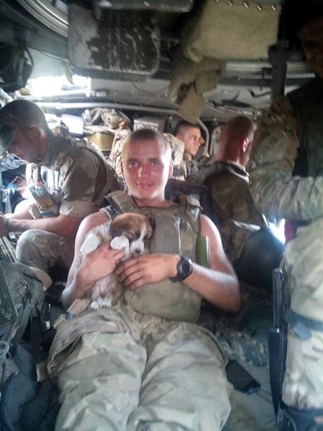 Чим займаються на Донбасі найкращі друзі бійців АТО-3 - фото 12