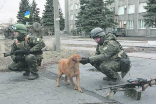 Чим займаються на Донбасі найкращі друзі бійців АТО-3 - фото 5