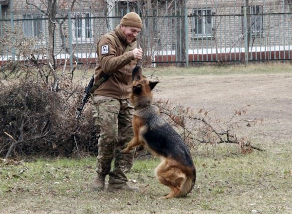 Чим займаються на Донбасі найкращі друзі бійців АТО-3 - фото 6
