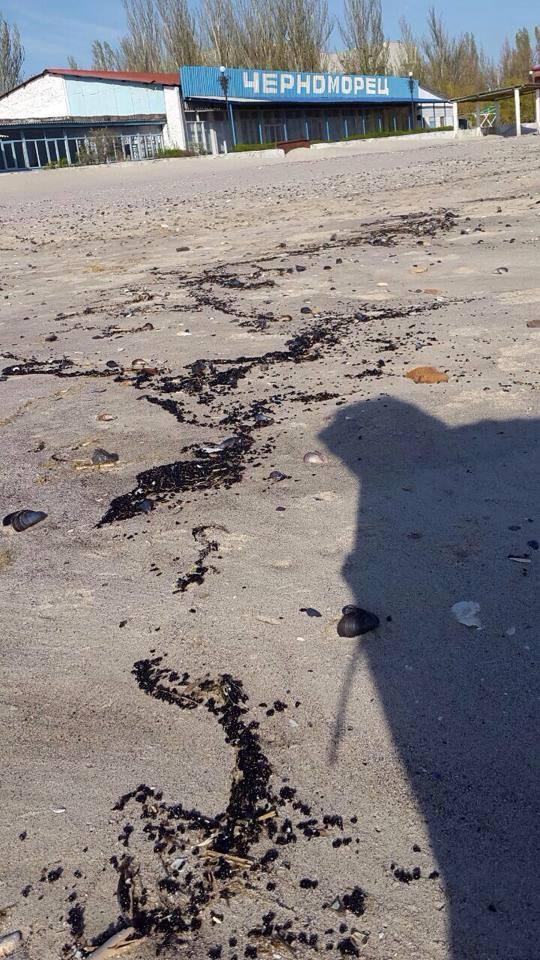 Узбережжя Коблево вкрилось плямами нафти - фото 3