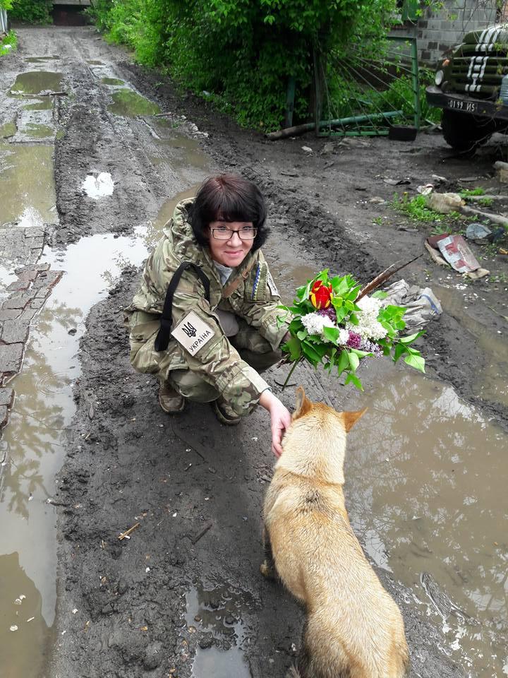 Миколаївські волонтери похизувались фото фронтових котів та собак в зоні АТО - фото 7