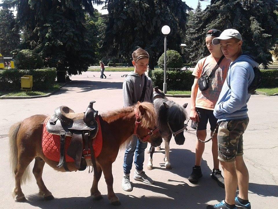"""У вінницькому зоодворику стартував благодійний проект """"Парк мрій"""" - фото 4"""