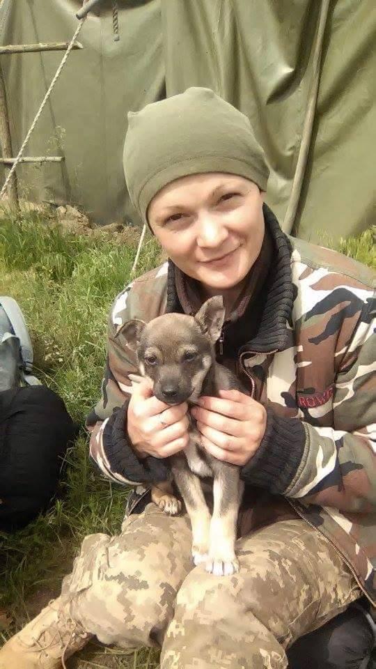 Чим займаються на Донбасі найкращі друзі бійців АТО-4 - фото 12