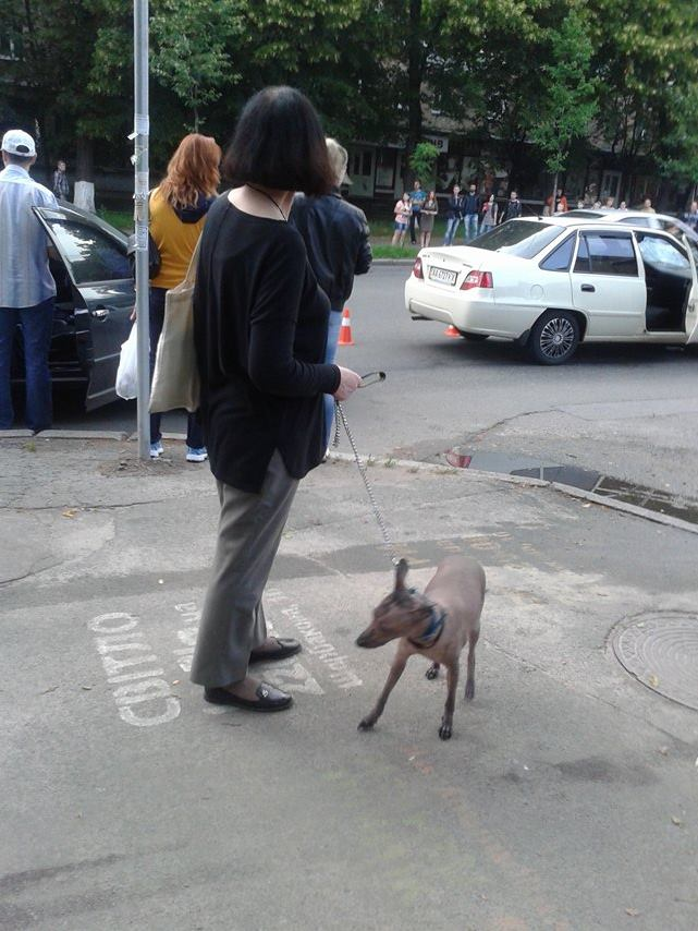 У Києві легковий автомобіль збив дитину  - фото 1