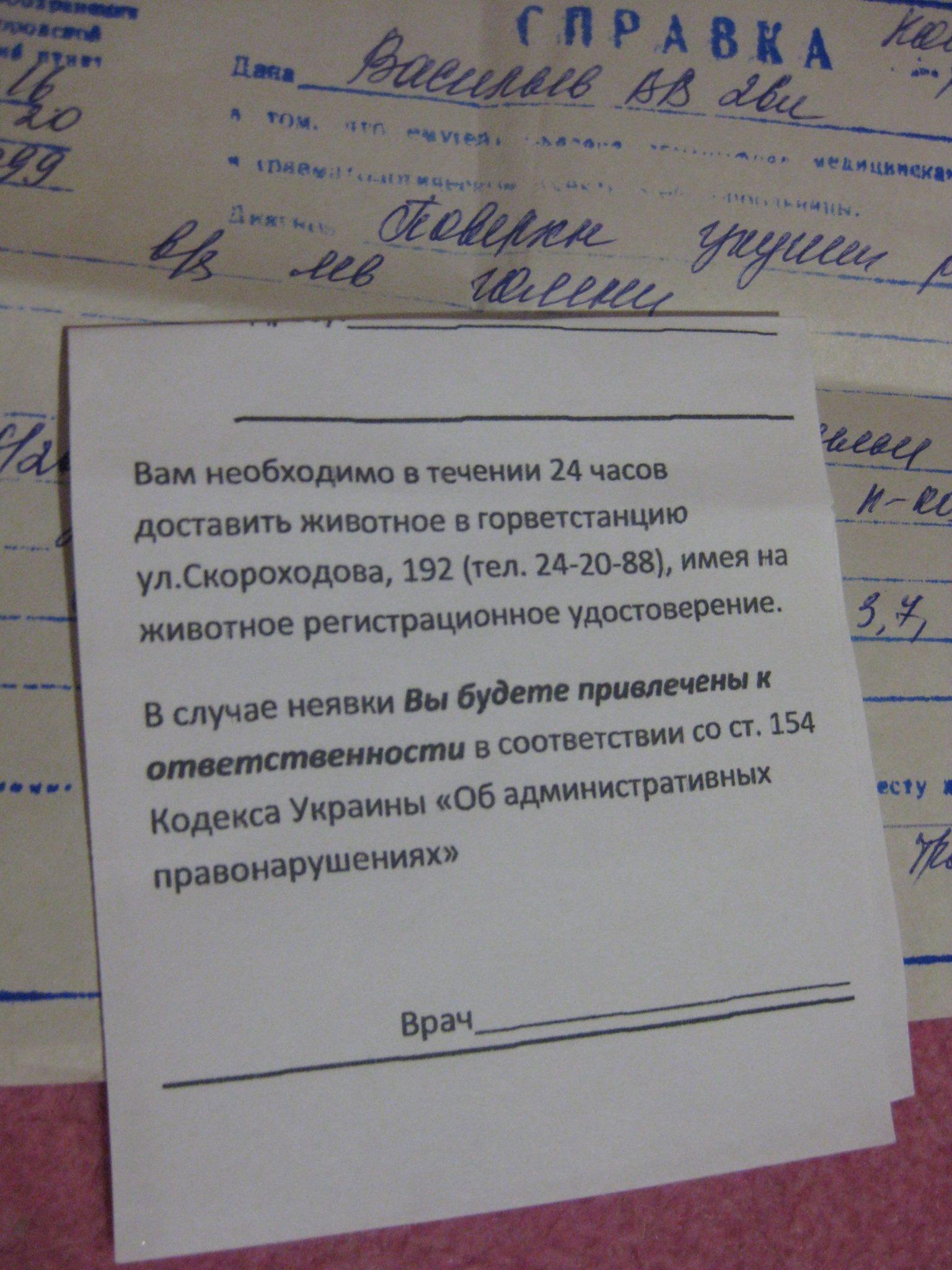 У Миколаєві колишнього студмера покусала собака - фото 2