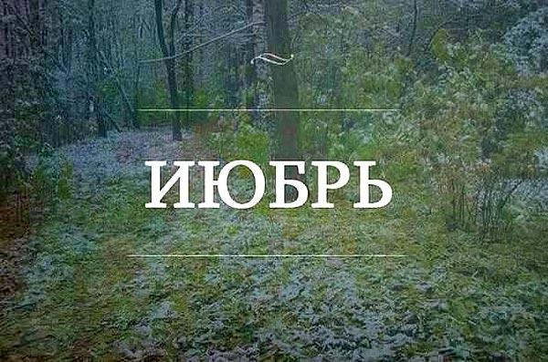 Поліграф Охендовського та куди пропало літо - фото 2