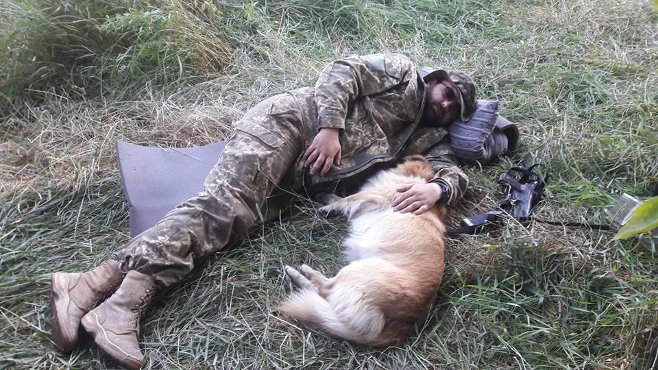Чим займаються на Донбасі найкращі друзі бійців АТО-5 - фото 5