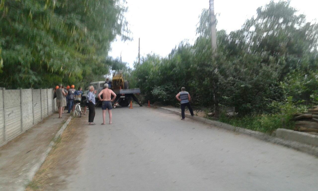 У Миколаєві шквальний вітер повалив дерево біля школи - фото 2