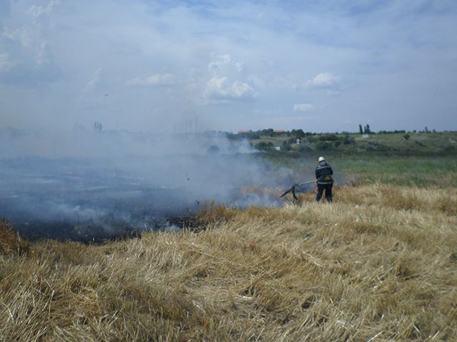 """У Миколаєві через необережне поводження з вогнем вигоріло 10 тис. """"квадратів"""" стерні"""