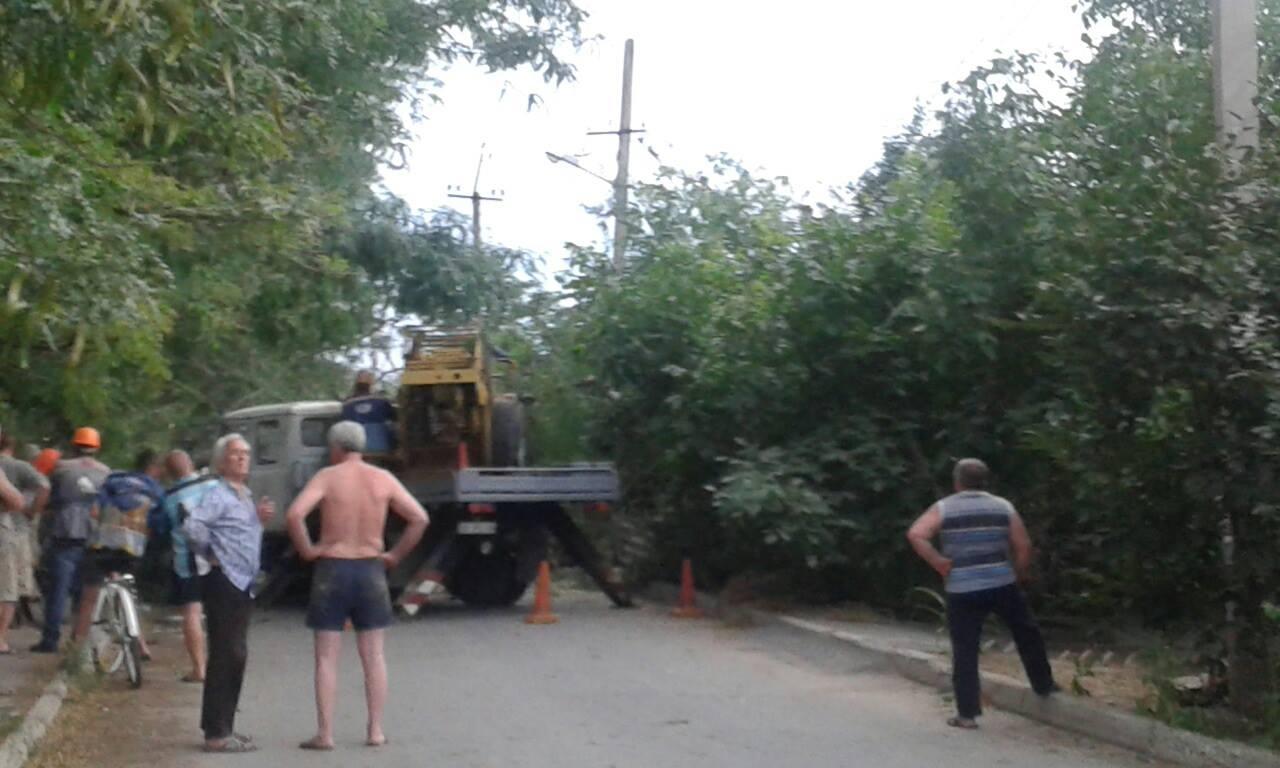 У Миколаєві шквальний вітер повалив дерево біля школи - фото 1