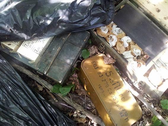 На Харківщині в лісі знайшли величезний арсенал зброї та боєприпасів - фото 1