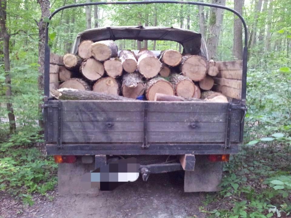 У Лісопарку копи спіймали браконьєра  - фото 2