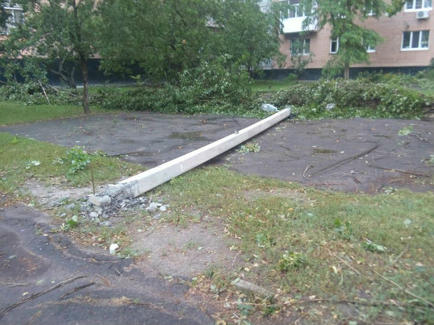 Ураган у Харкові: вирвані з коренем дерева та повалені стовпи - фото 2