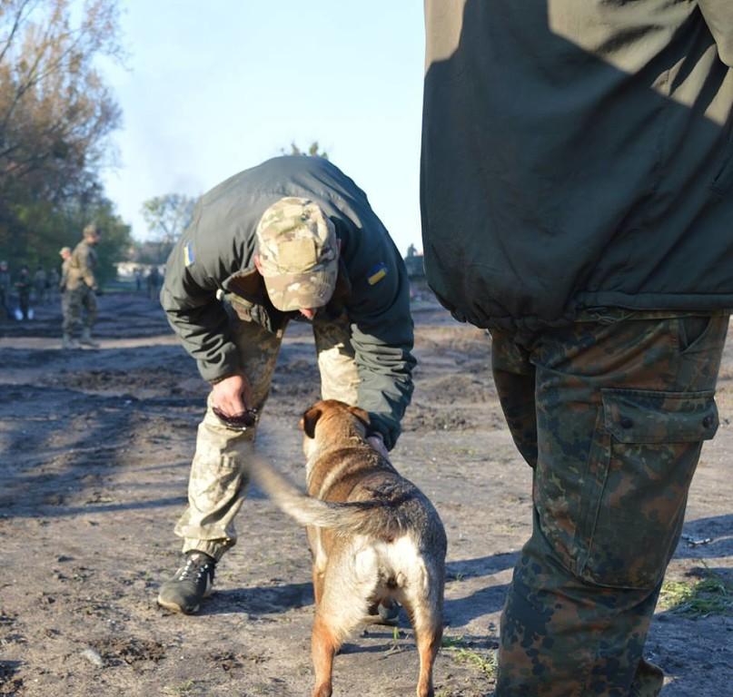 Чим займаються на Донбасі найкращі друзі бійців АТО - 6 - фото 7