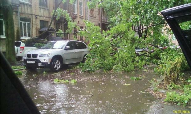 Ураган у Харкові: вирвані з коренем дерева та повалені стовпи - фото 5