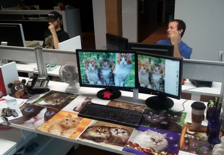 20 доказів того, що працювати в офісі - це весело! - фото 14