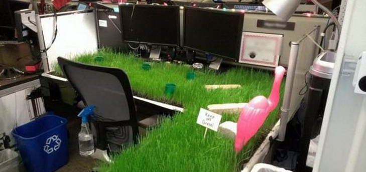 20 доказів того, що працювати в офісі - це весело! - фото 18