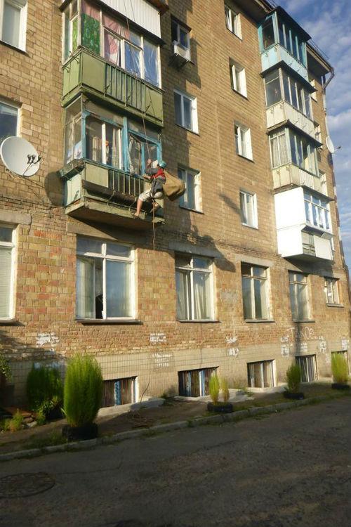 Як замкнений в столичній квартирі кіт два тижні харчувався лише голубами  - фото 1