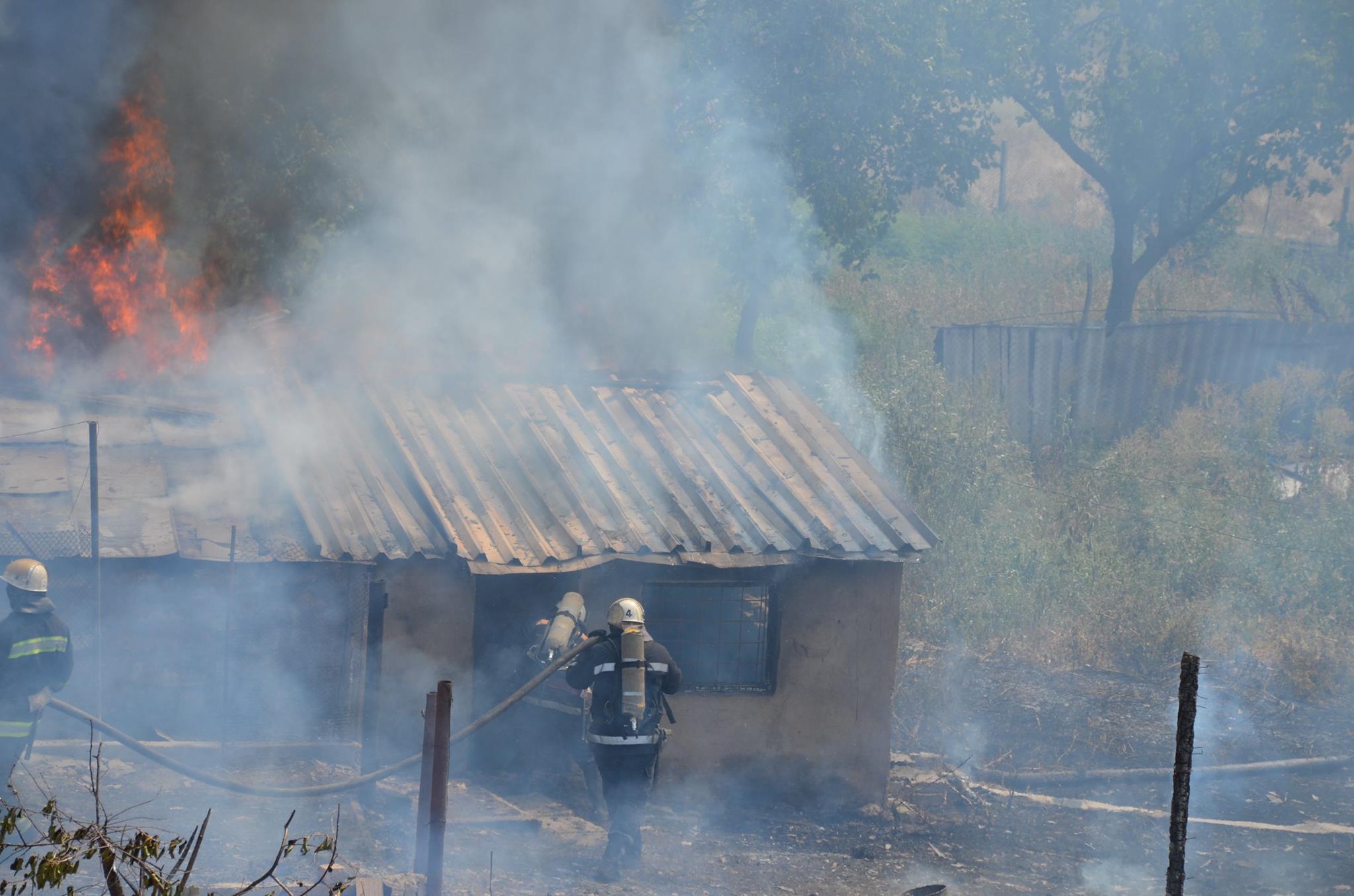 На Миколаївщині через пожежу сухостою загорілись сараї та житловий будинок - фото 3