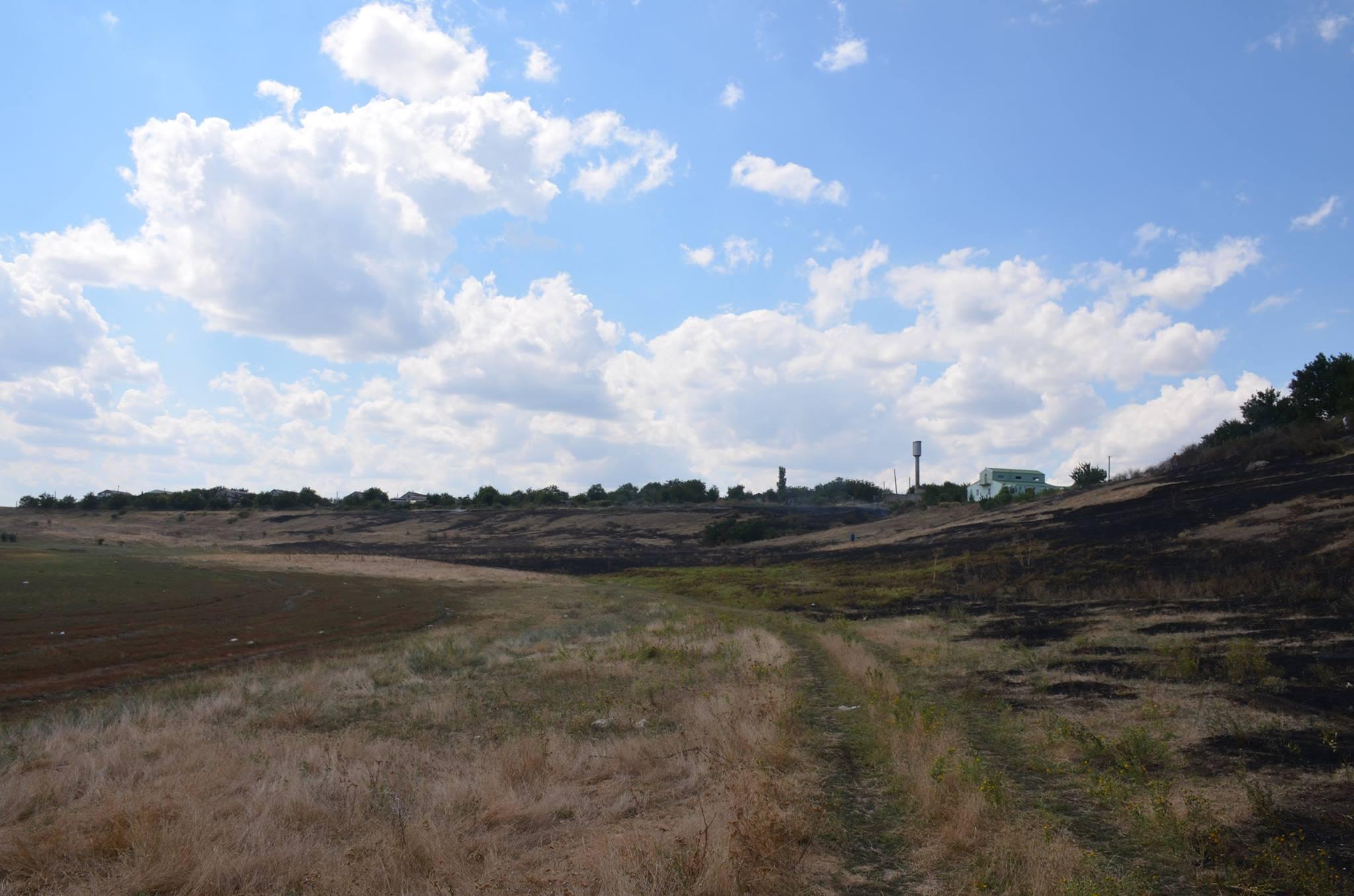 На Миколаївщині через пожежу сухостою загорілись сараї та житловий будинок - фото 1