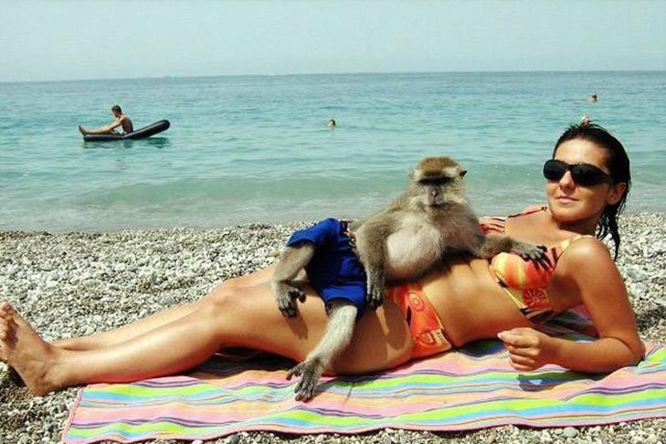 30 дивних і кумедних пляжних фотографій - фото 29
