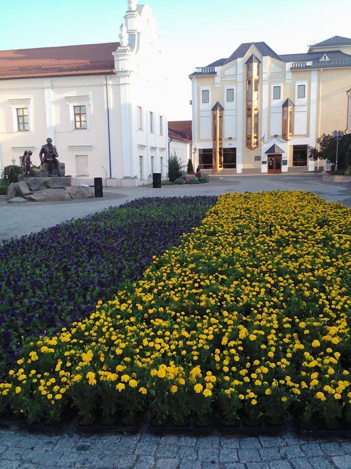 У Вінниці висадили прапор України з чорнобривців - фото 4