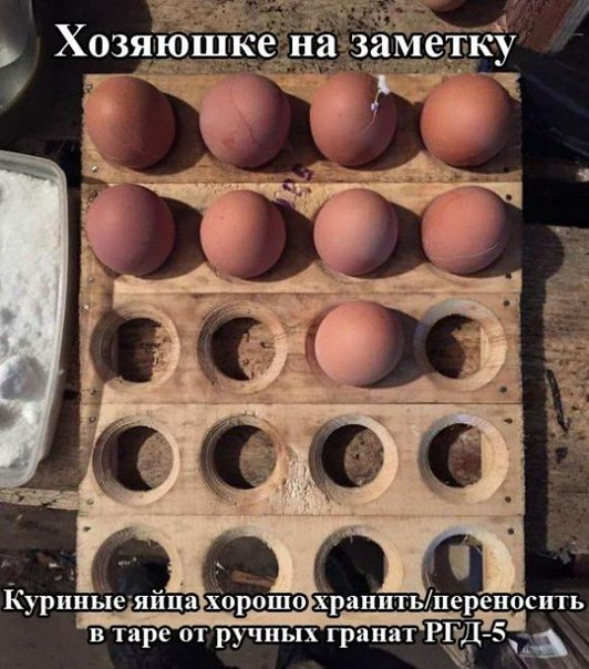 Армійські софізми - 17 (18+) - фото 11