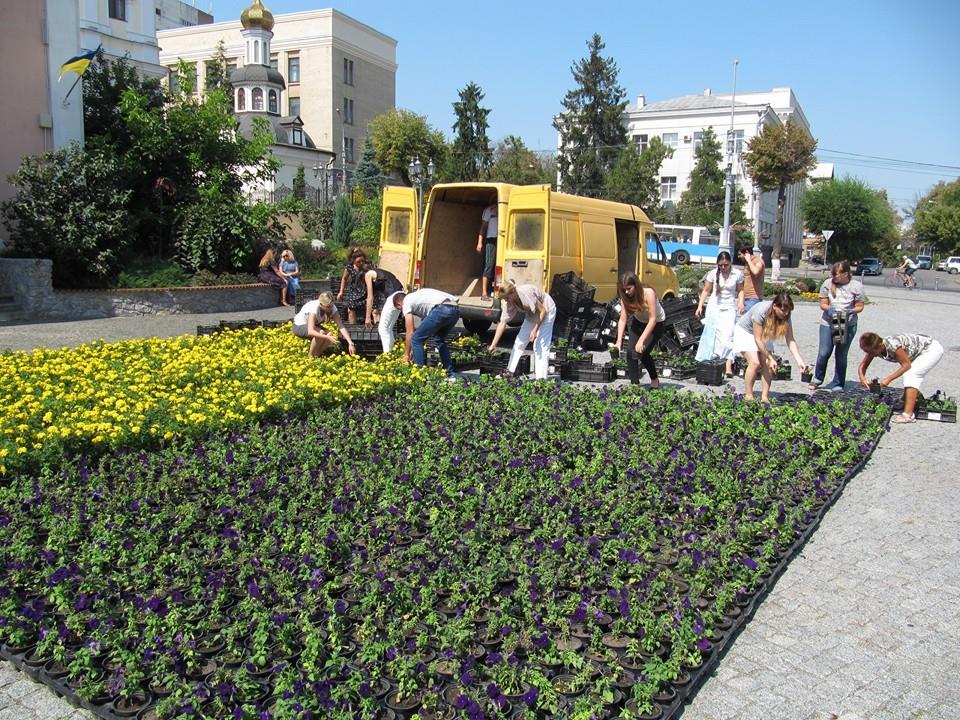 У Вінниці висадили прапор України з чорнобривців - фото 3