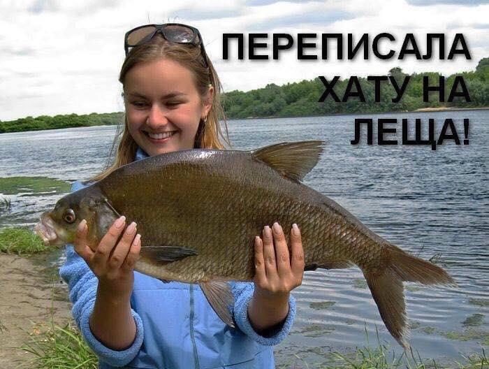 """""""Борцун з корупцією"""" Лещенко у фотожабах - фото 5"""