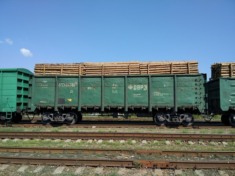 Хто і навіщо вирубує ліси Луганської області та погрожує захисникам довкілля (ФОТО) - фото 2