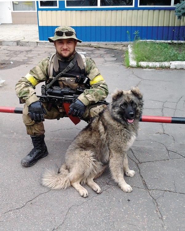 Чим займаються на Донбасі найкращі друзі бійців АТО - 7 - фото 6
