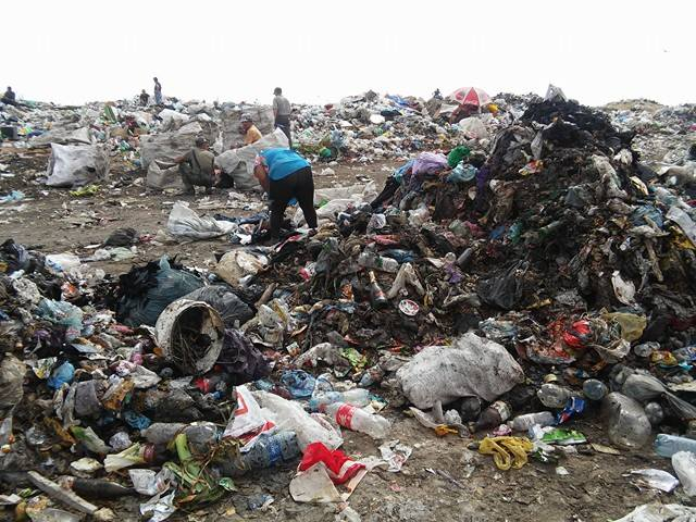 Львівське сміття у Миколаєві моментально розтягують безхатченки та цигани
