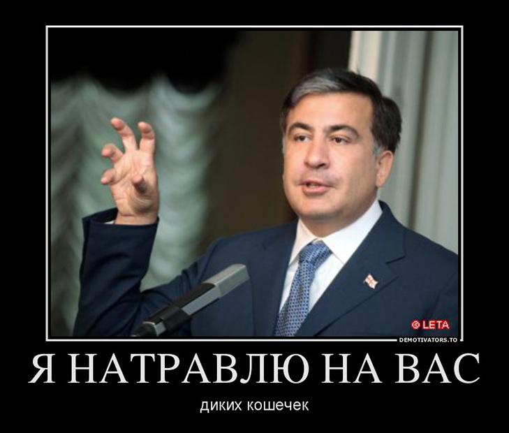 ГПУ получила запрос от Минюста Грузии о выдаче Саакашвили, - Сарган - Цензор.НЕТ 8937