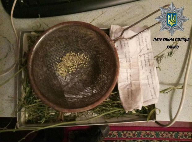 Мешканець Харкова завісив всю квартиру сушеною коноплею - фото 3