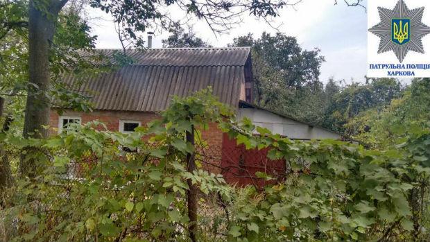 На Нових Будинках затримали чоловіка, який намагався залізти в хату через дах - фото 1