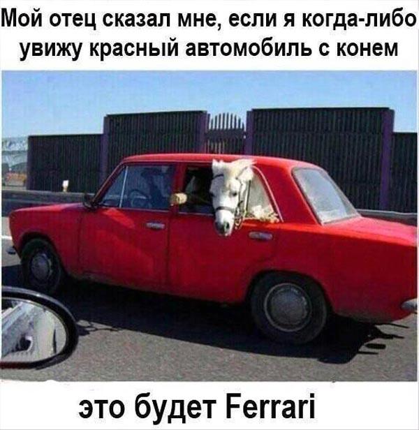 Je suis Porn hub та куди, крім Польші, поїдуть працювати українці - фото 4